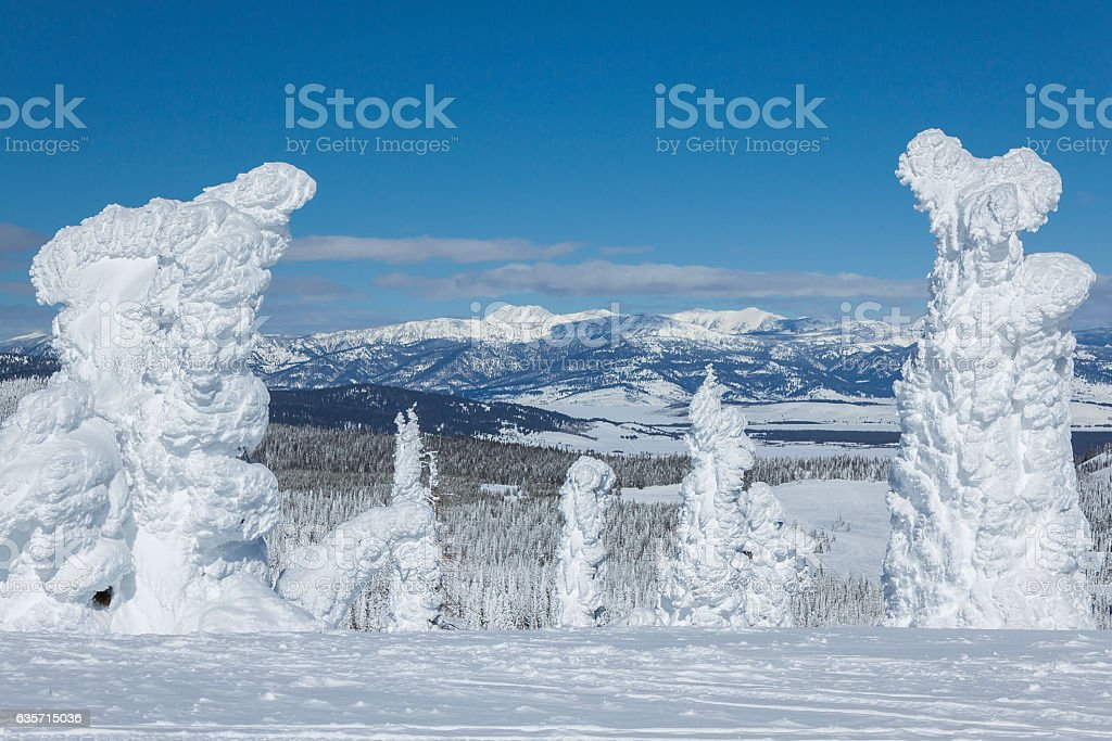 Ghost Trees on Two Top Mountain, West Yellowstone, Montana. stock photo