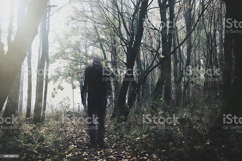 ghostly figure walking through woodland stock photo