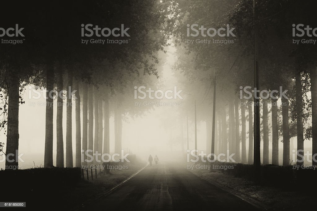 Ghosts in the mist stock photo