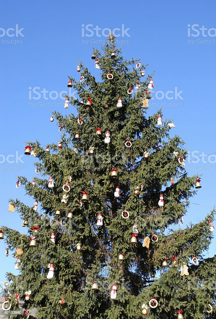 giant christmas tree outdoors royalty-free stock photo