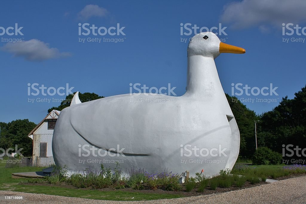 Giant Duck Building on Long Island in New York stock photo