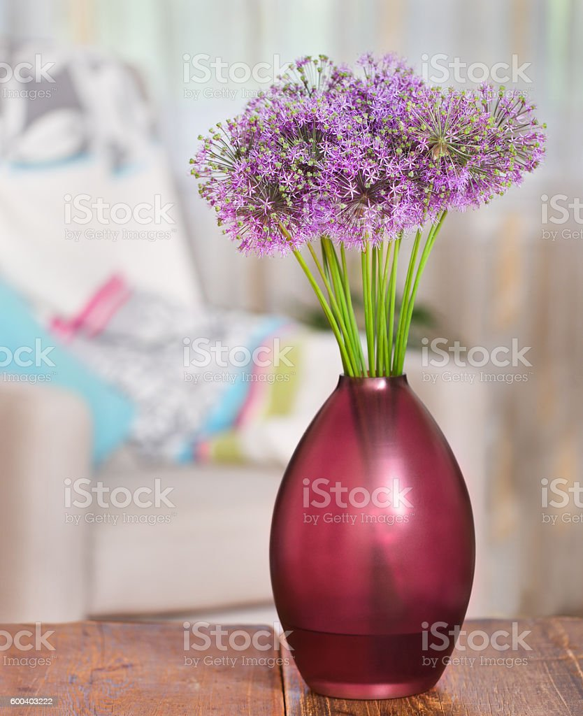 Giant Onion (Allium Giganteum) flowers in vase stock photo
