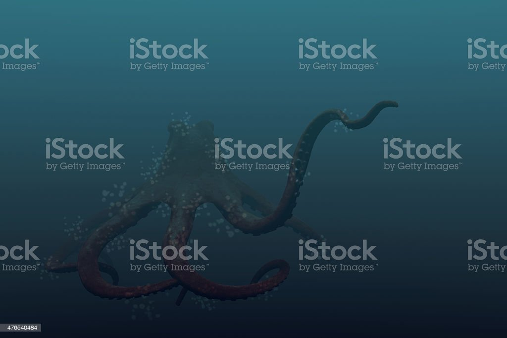 giant pacific octopus stock photo