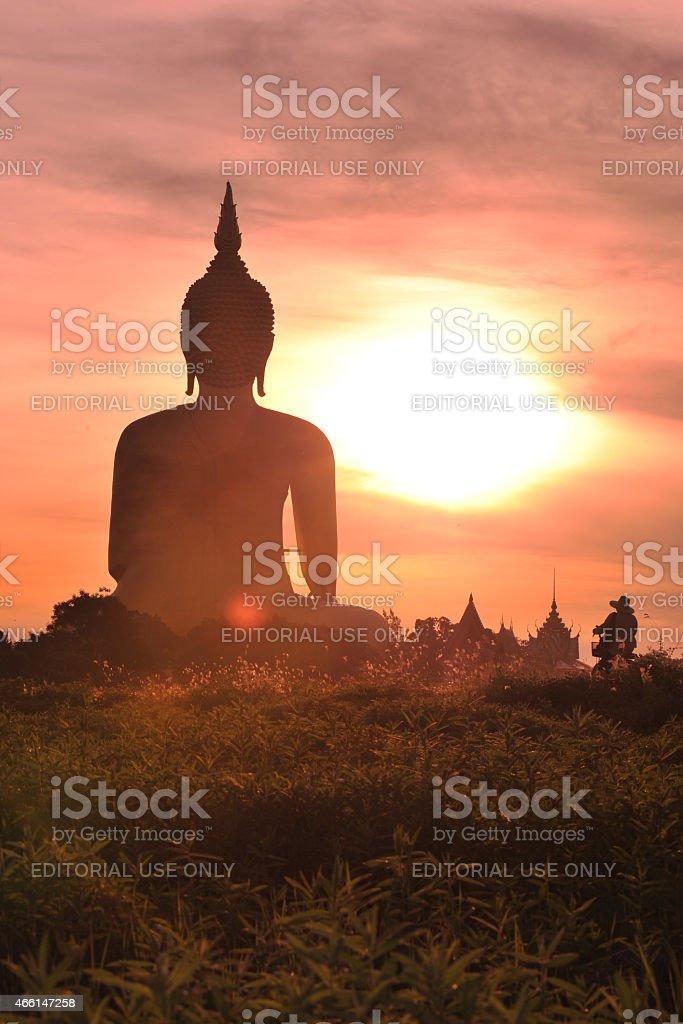 statue géante de Bouddha dans la lumière du matin. photo libre de droits
