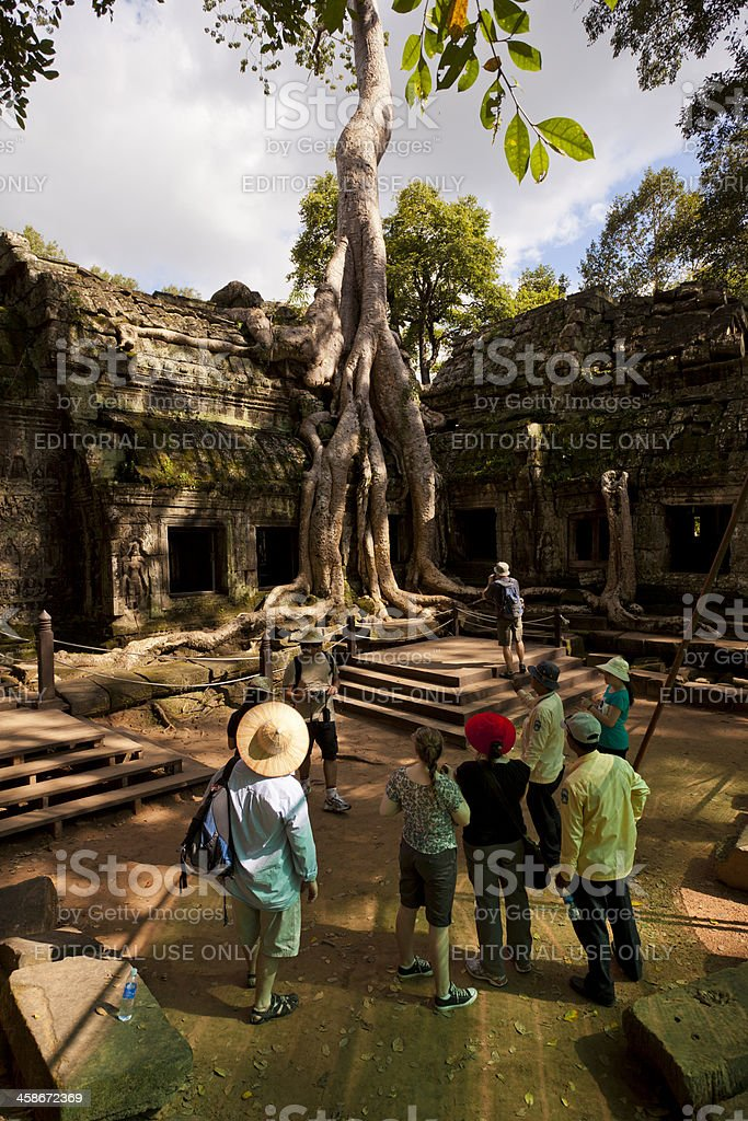 Giant Tree growing over Ta Prohm Temple, Cambodia stock photo
