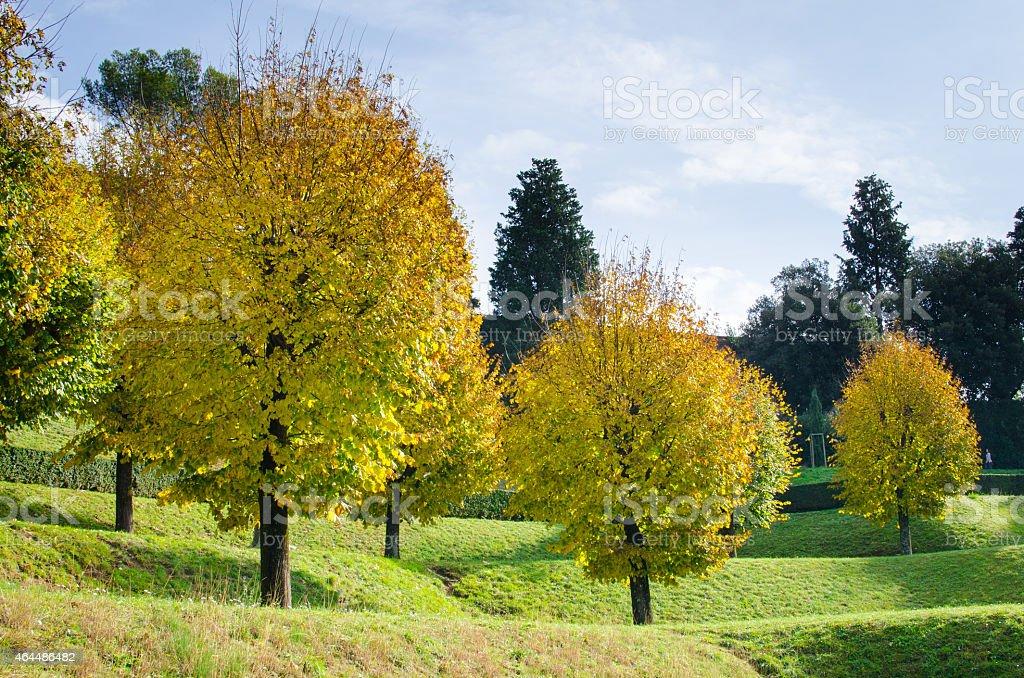 Giardini di Boboli - Firenze stock photo
