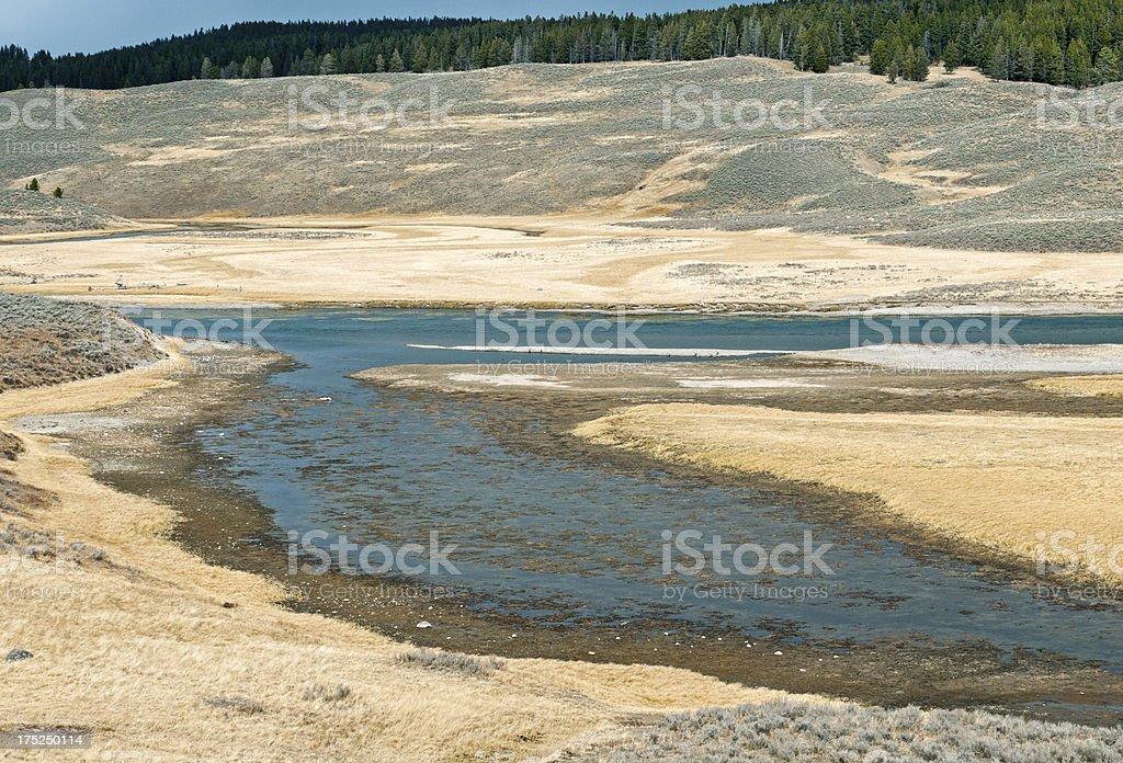 Gibbon River in Yellowstone Park USA royalty-free stock photo