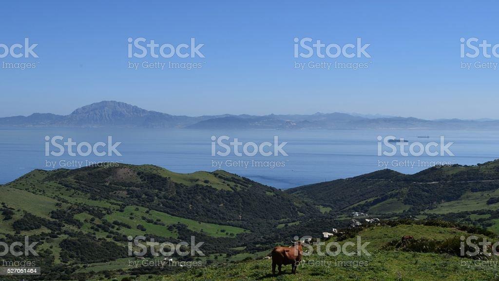Gibraltar Strait stock photo