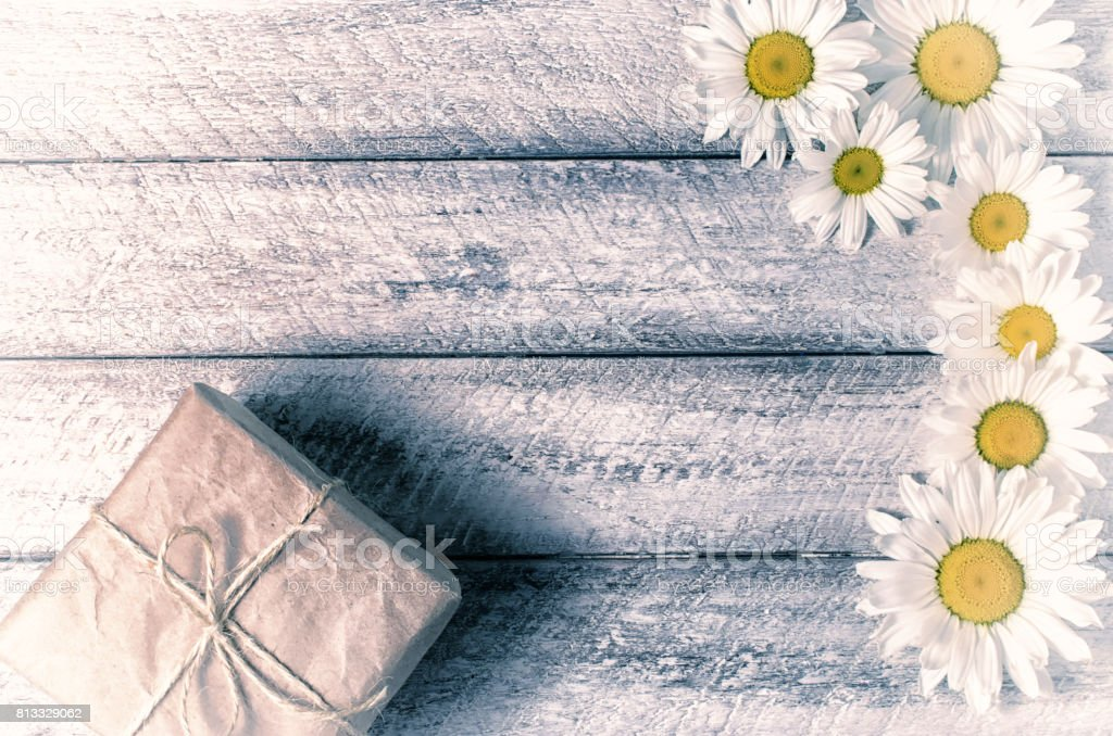 gift box with chamomile stock photo