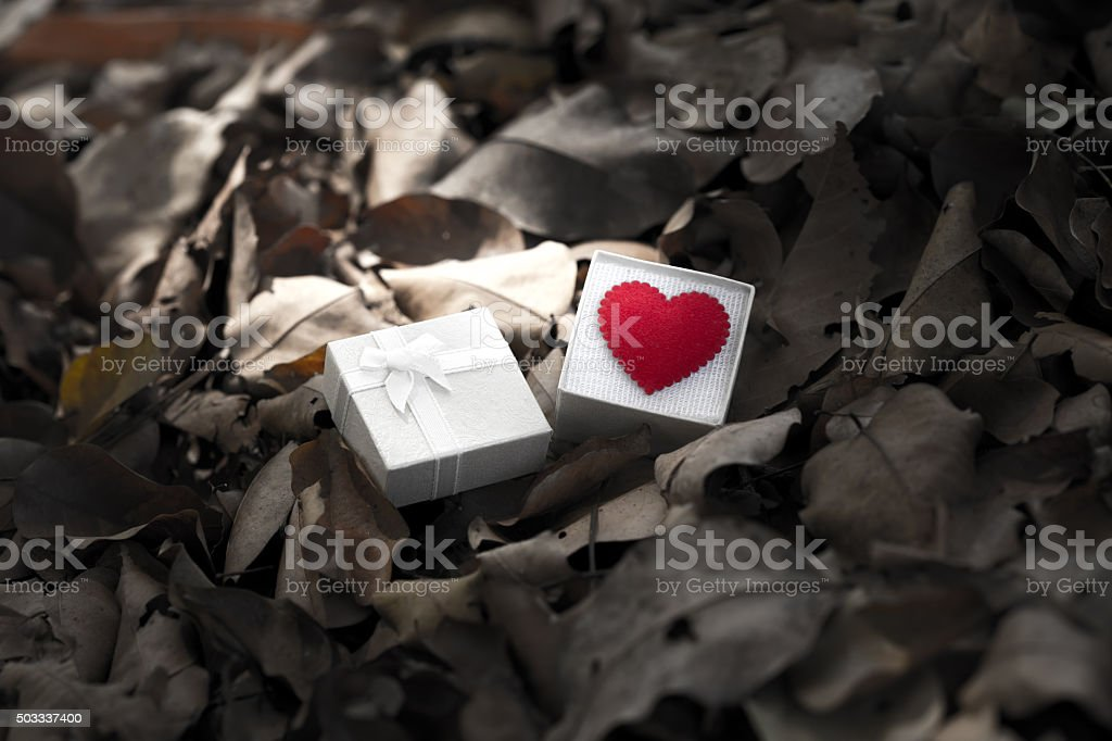 Gift box with heart on dry leaf, Valentine day stock photo