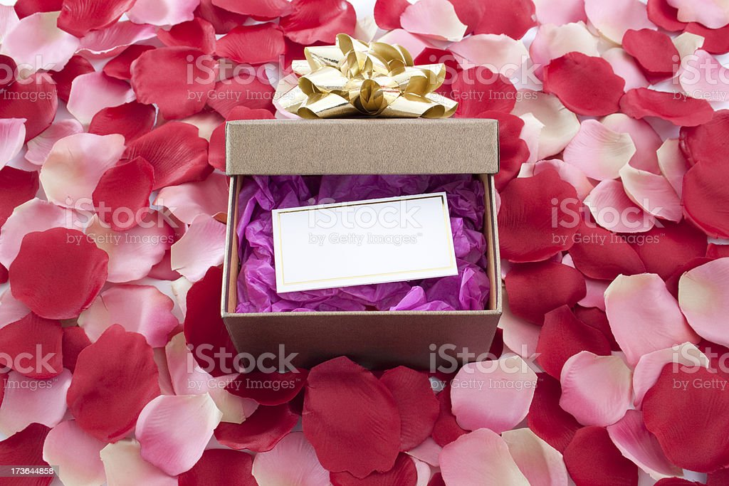 Gift Box with Rose Petals royalty-free stock photo