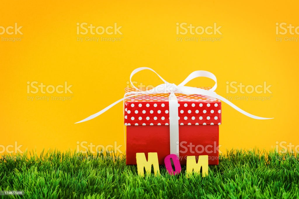 Gift for Mom royalty-free stock photo