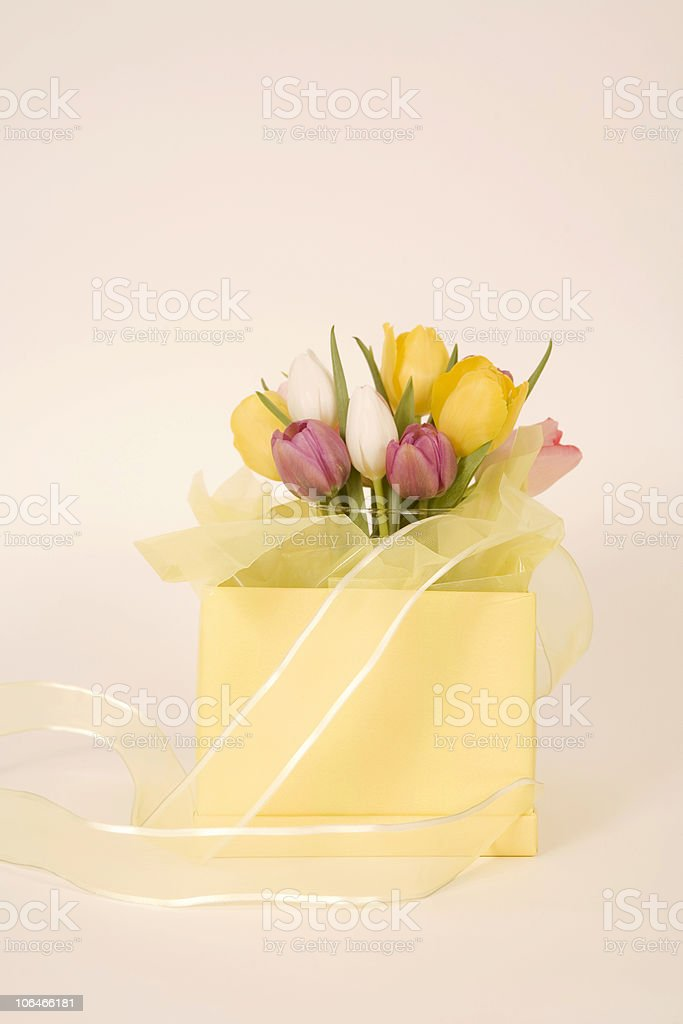 Gift of Flowers stock photo