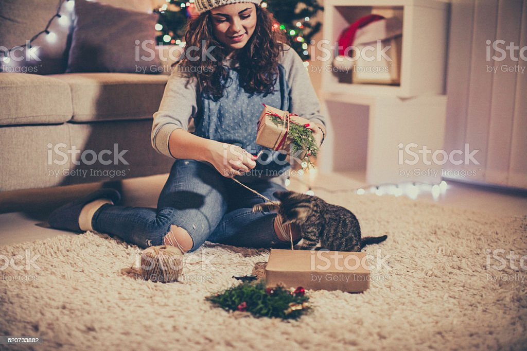 Gift time with my cat stock photo