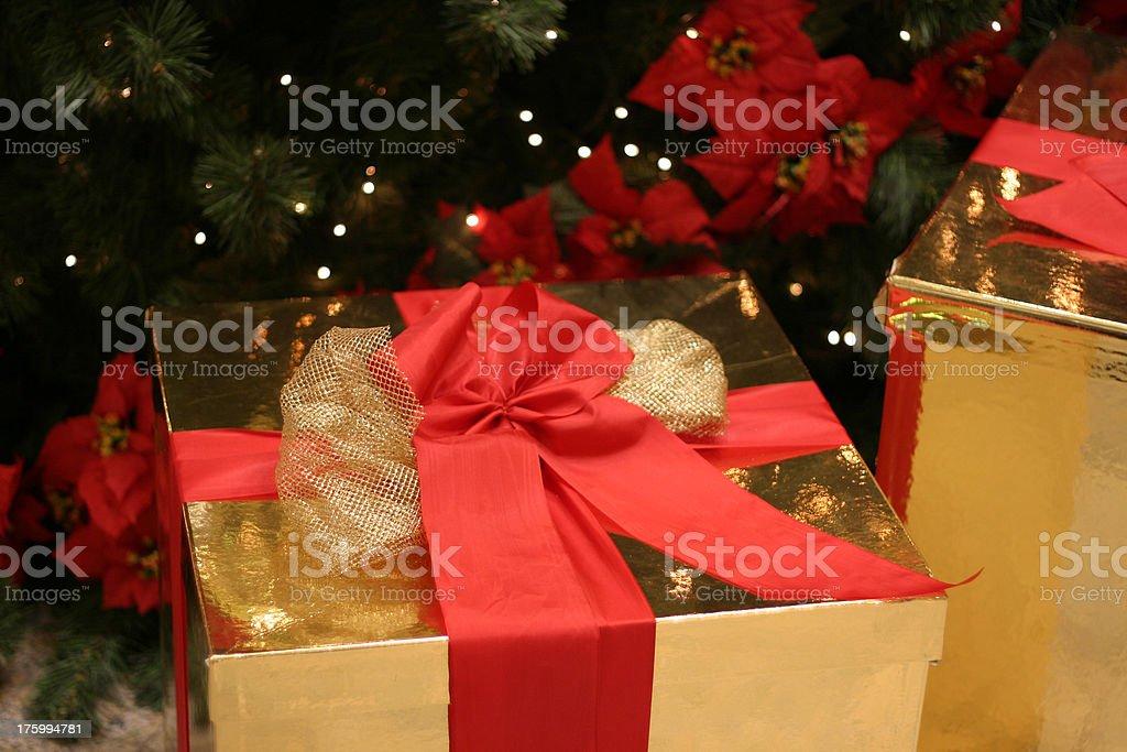 Gift under christmas tree stock photo