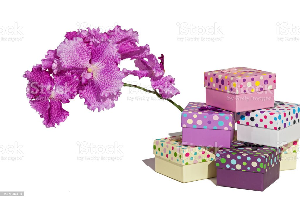 Gift with a flower stock photo