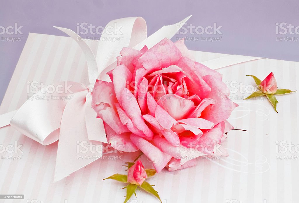 Gift with Rose stock photo