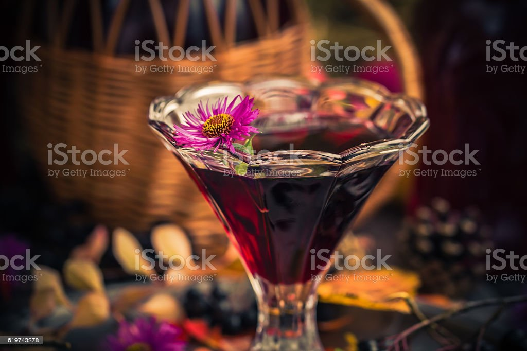 Gifts autumn kitchen sweet aromatic drink tincture chokeberry stock photo