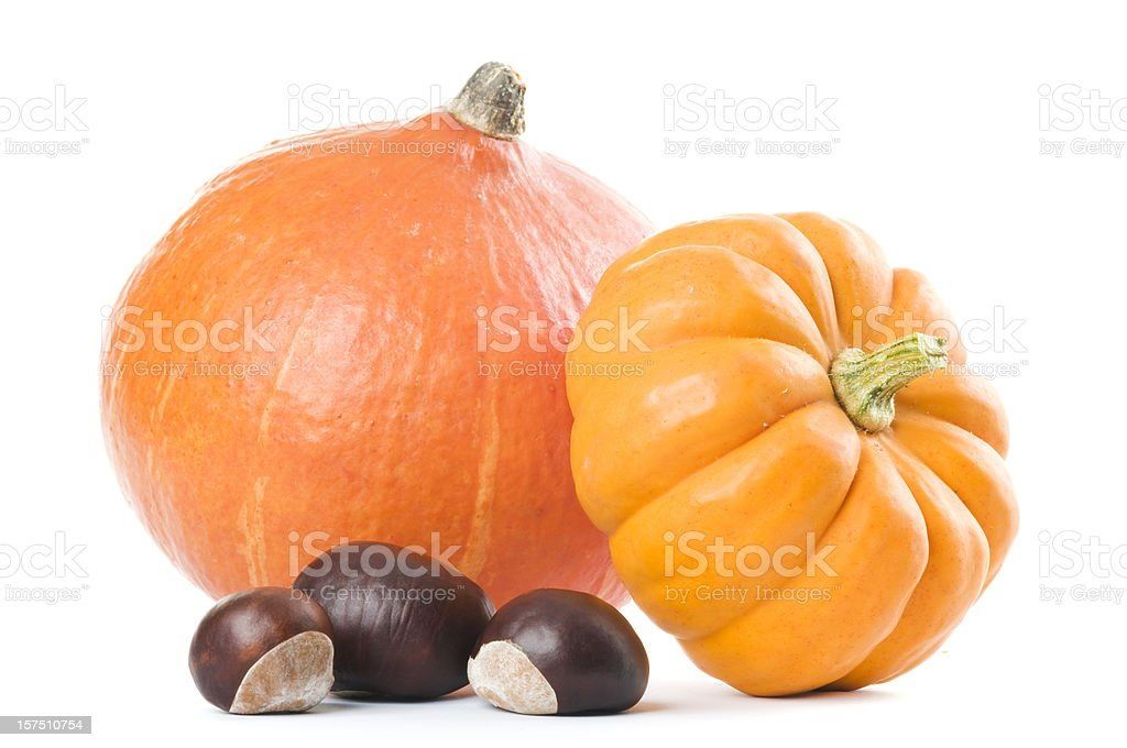 Gifts of autumn - gourds and chestnuts on white. royalty-free stock photo