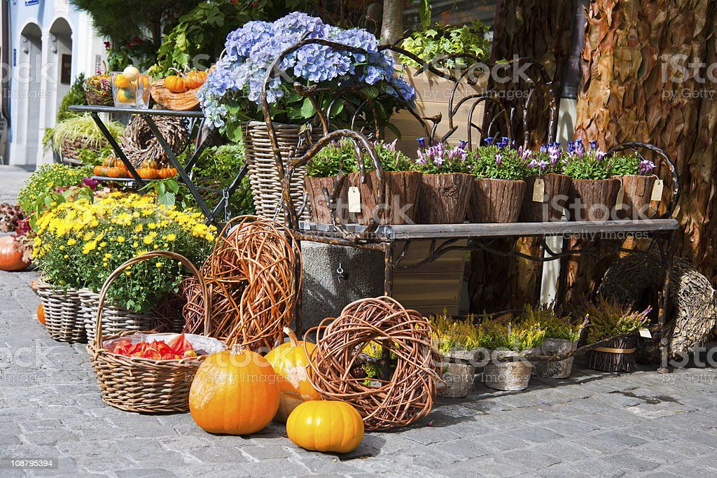 Gifts of autumn royalty-free stock photo