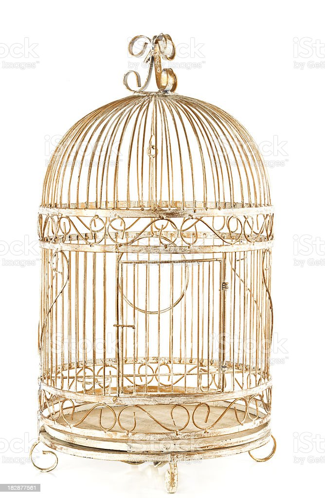 Gilded Birdcage stock photo