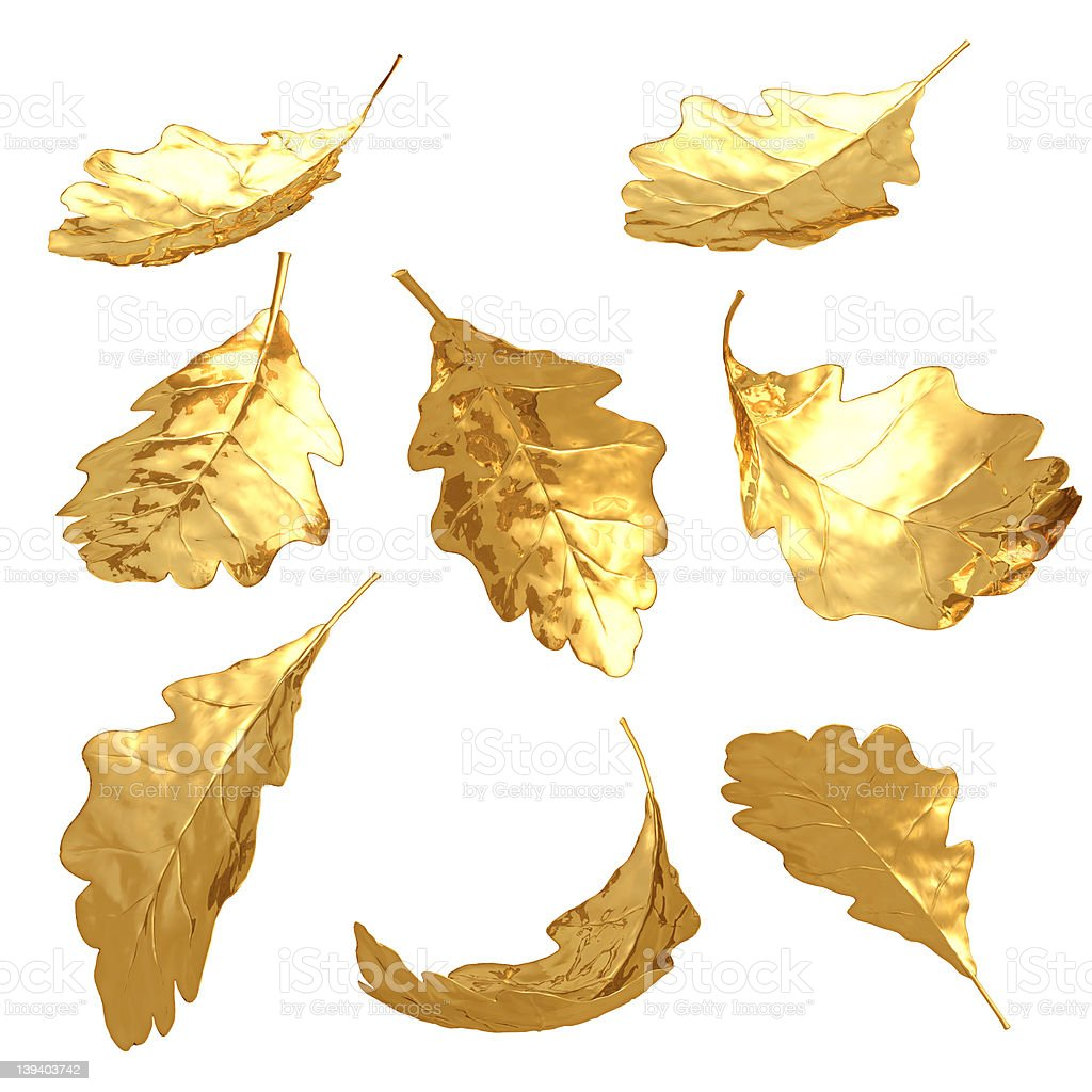 Gilded Oak Leaves royalty-free stock photo
