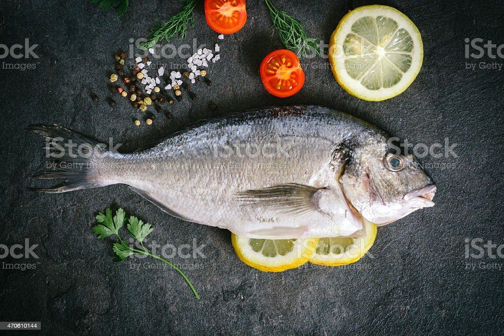 Gilthead fish on dark board stock photo
