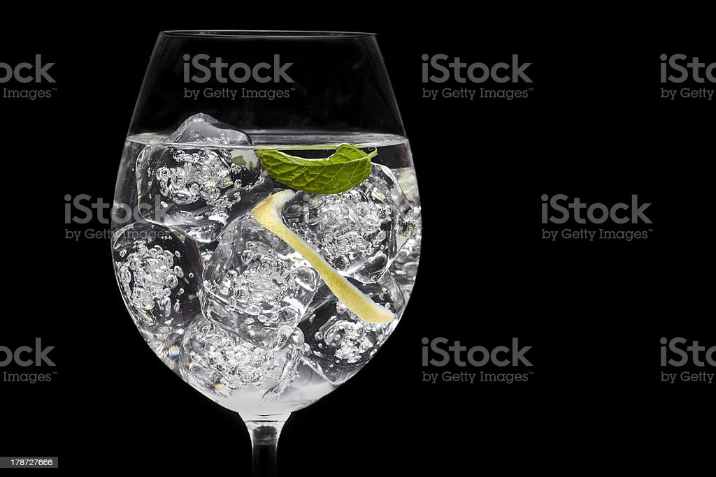 A gin and tonic cocktail with mint stock photo