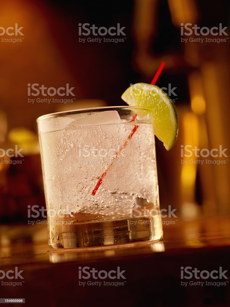 Gin and Tonic on the Rocks royalty-free stock photo