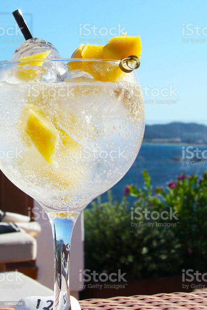 Gin and tonic stock photo