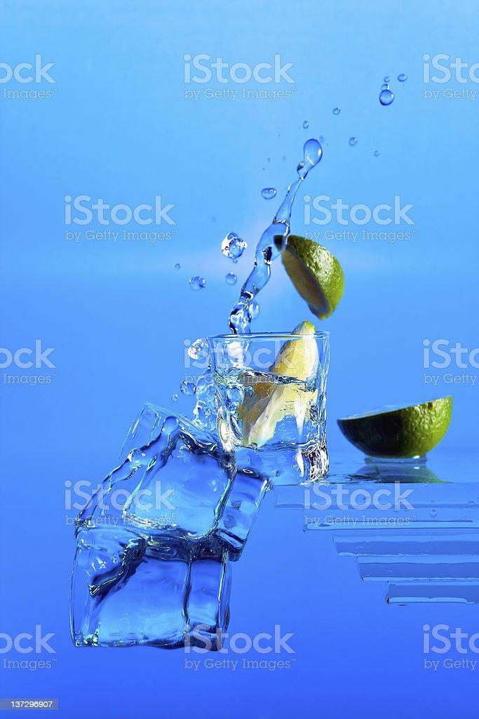 gin. royalty-free stock photo