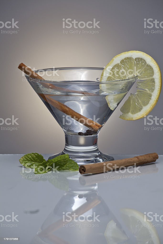Gin tonic cocktail royalty-free stock photo