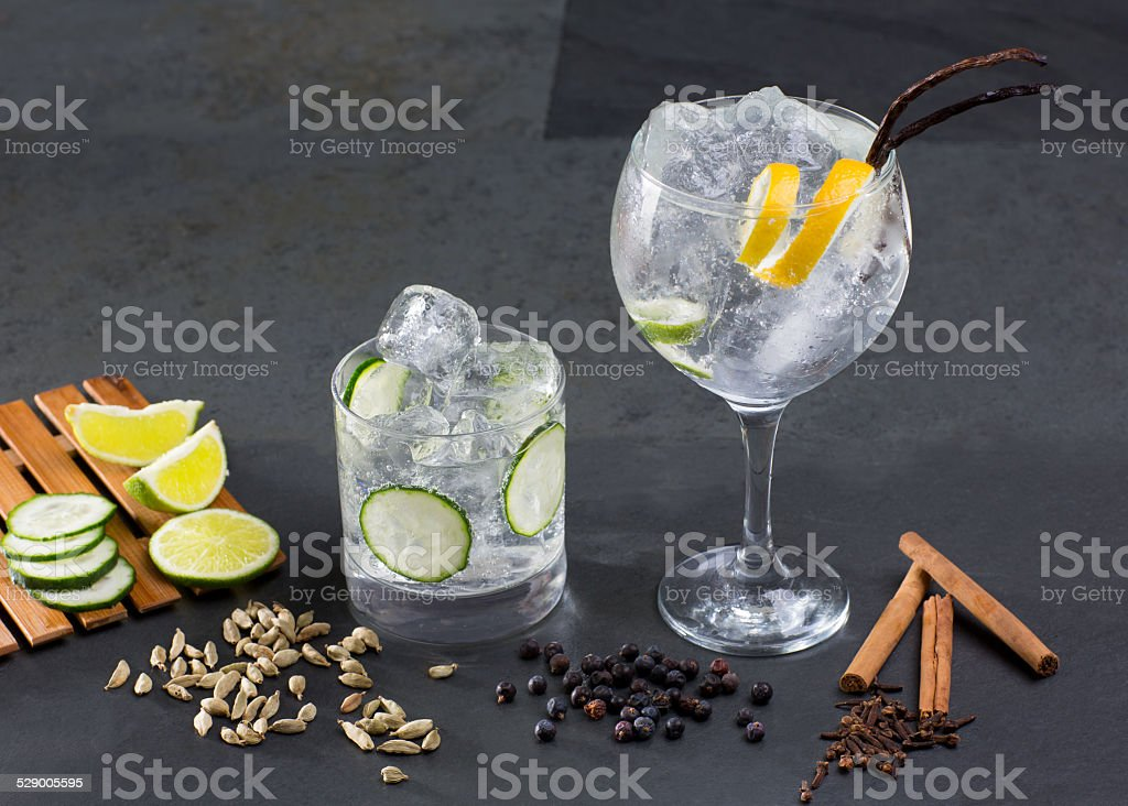 Gin tonic cocktail with lima cucumber vanilla cloves cardamom stock photo