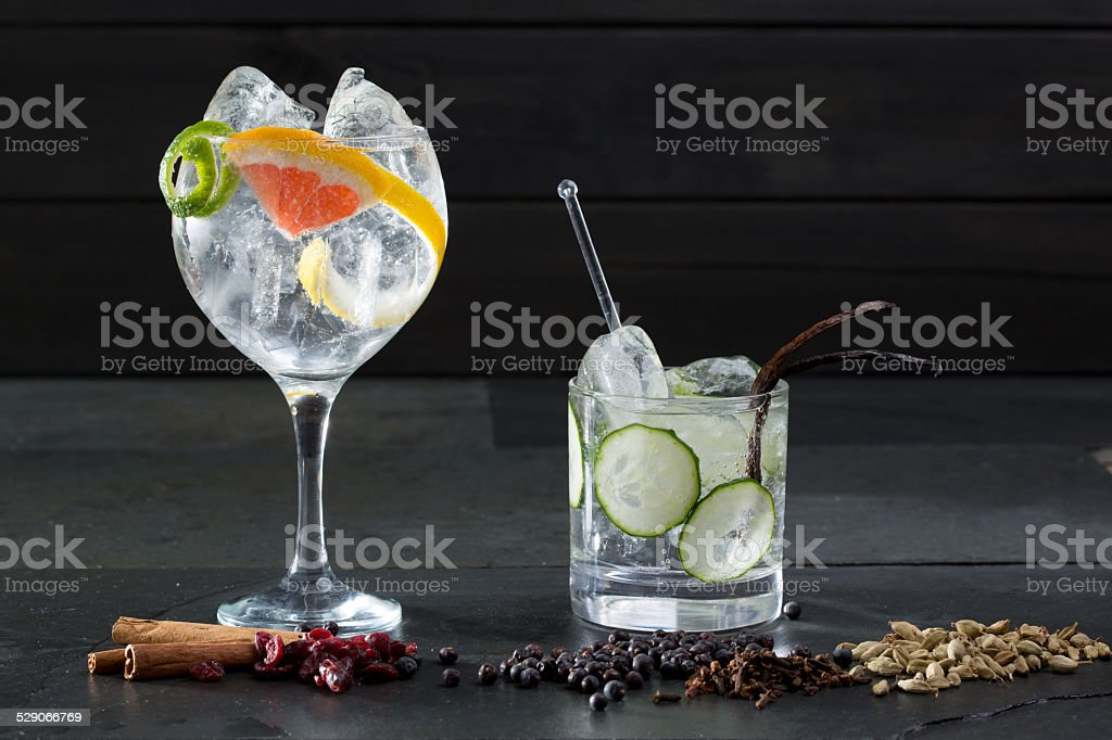 Gin tonic cocktails with lima cucumber and grapefruit stock photo