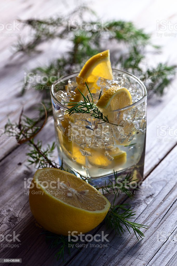Gin with lemon and juniper twig stock photo