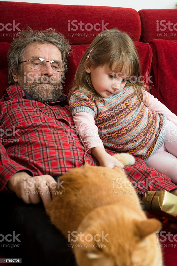 Ginger Cat, Grandfather and Granddaughter on Red Sofa, Europe stock photo
