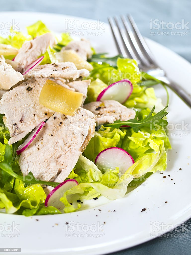 ginger chicken salads royalty-free stock photo