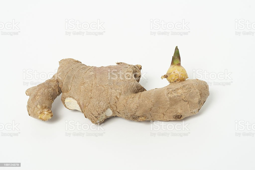 Ginger royalty-free stock photo