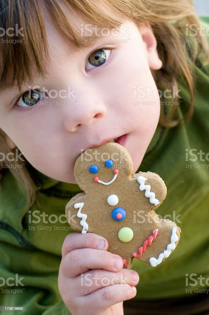 Gingerbread Cookie Boy royalty-free stock photo