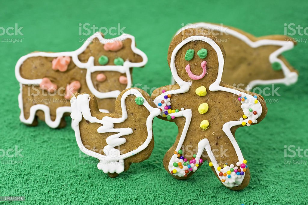Gingerbread man in a farm royalty-free stock photo