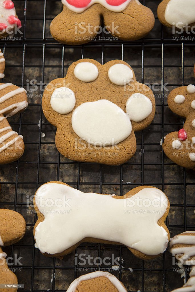 Gingerbread Paw royalty-free stock photo