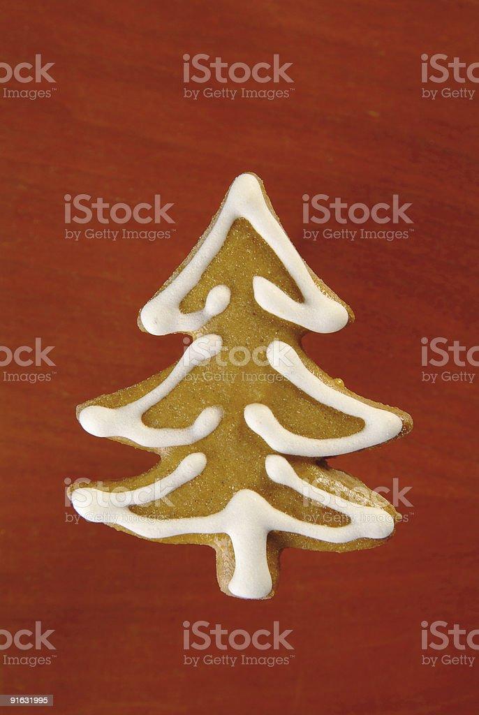 Имбирный дерево Стоковые фото Стоковая фотография