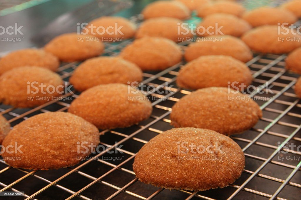 Gingersnap Cookies on a Cooling Rack stock photo