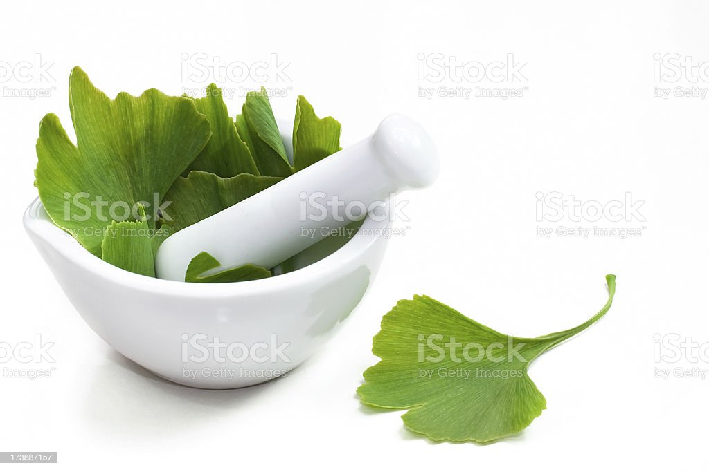 Ginkgo biloba in a mortar on a white background stock photo