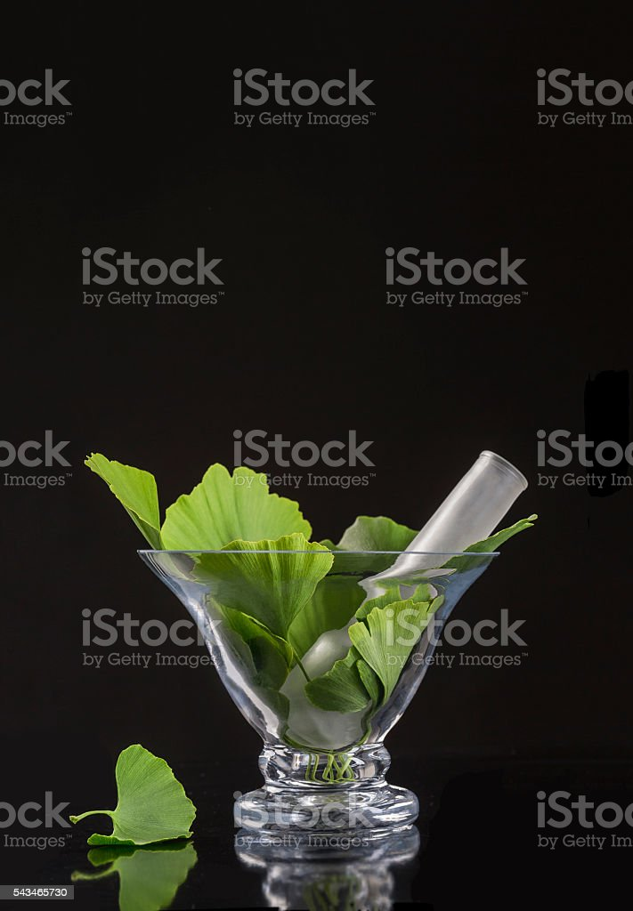 ginko bilboa leaf with glass mortar on black background stock photo