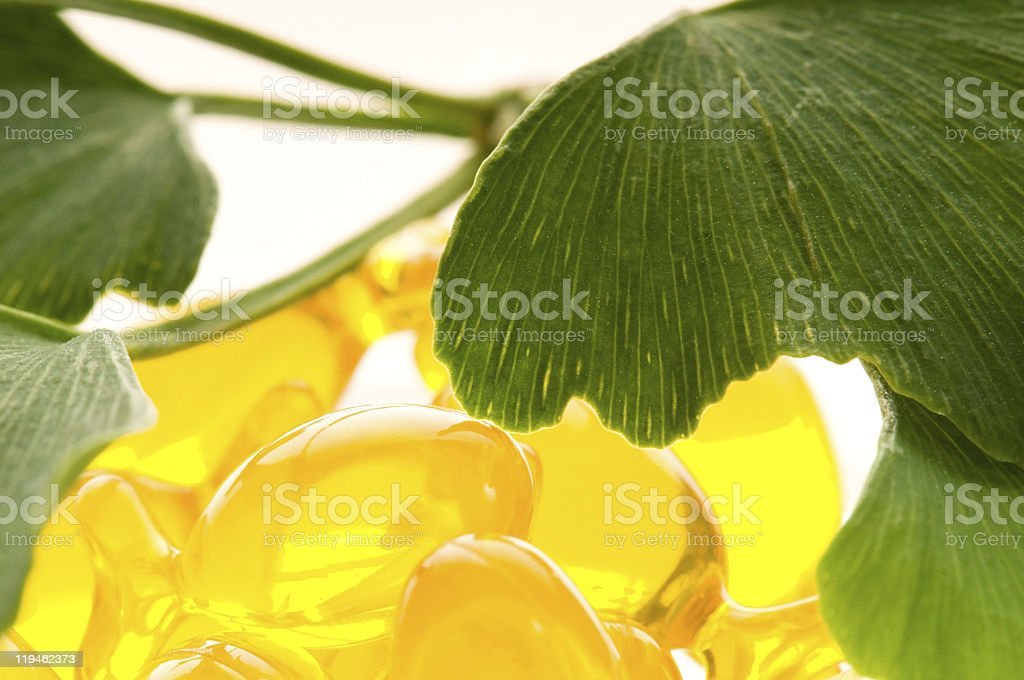 ginko biloba essential oil with fresh leaves - beauty treatment royalty-free stock photo