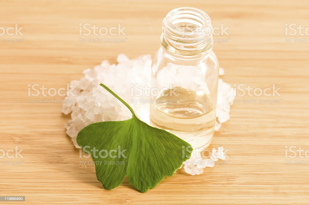 ginko biloba essential oil with fresh leaves royalty-free stock photo