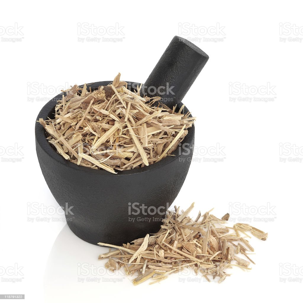 Ginseng Herb stock photo