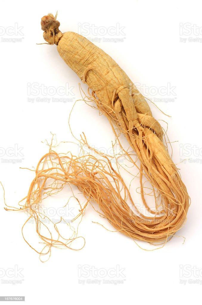 Ginseng royalty-free stock photo