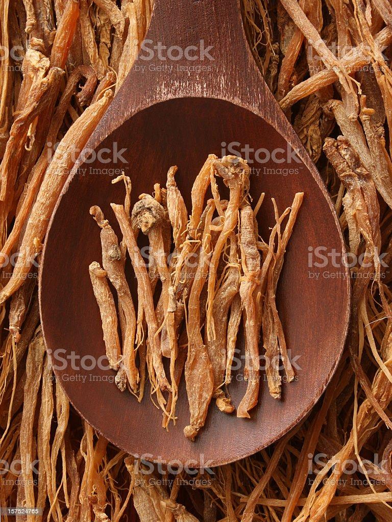 Ginseng root royalty-free stock photo